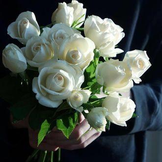 Белые розы в руках